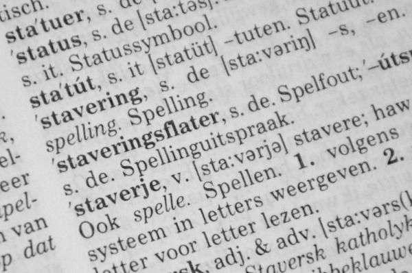 PvdA bliid mei dúdlikens Fryske stavering - Partij van de ...